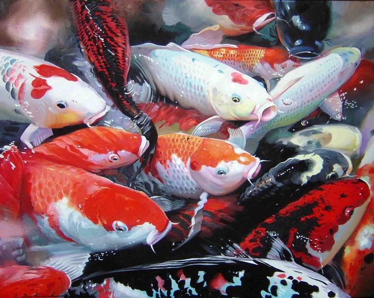 Grosir Benih Ikan Koi Murah Dan Berkualitas